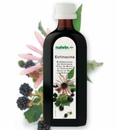 Ежевичный сироп с эхинацеей, 250 мл, пищевая добавка для укрепления иммунитета и профилактики простуды